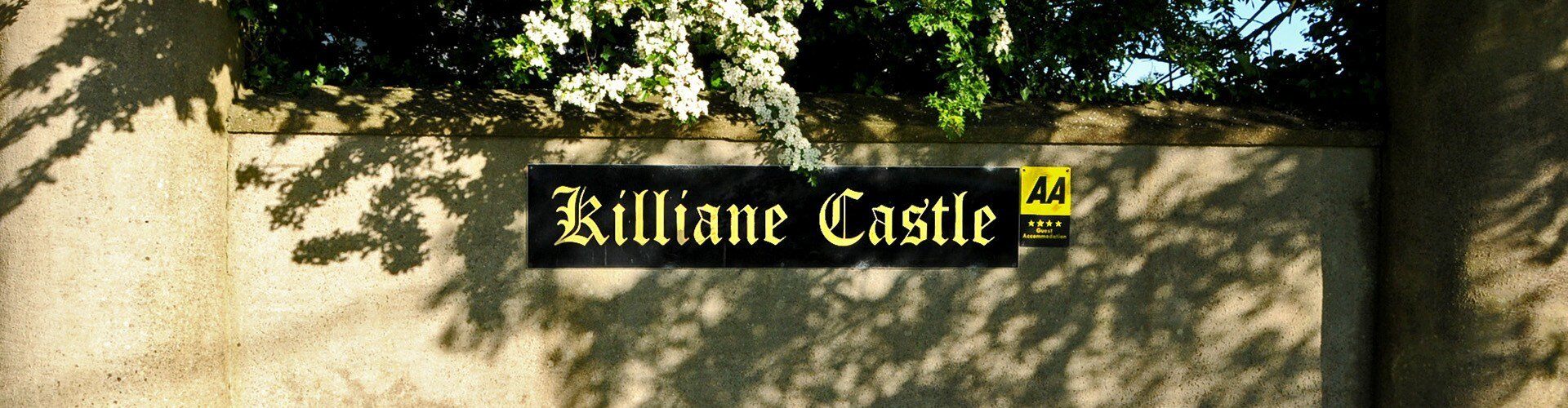 Killiane Castle AA****